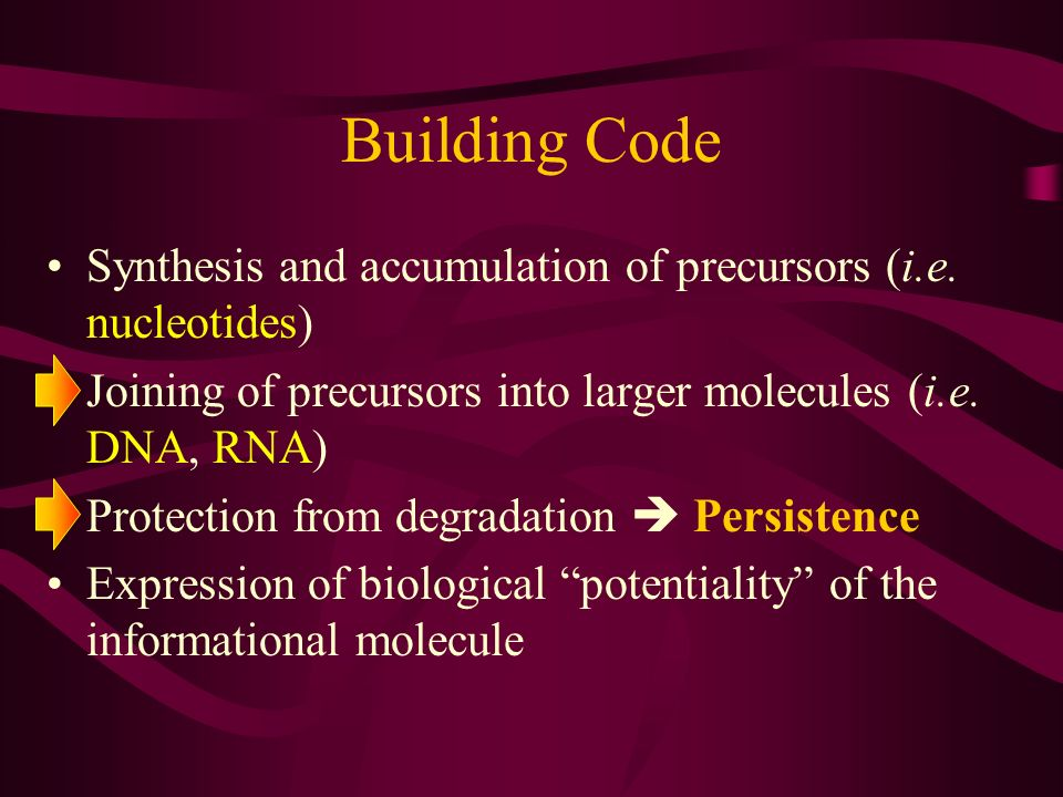 Building Code Synthesis and accumulation of precursors (i.e. nucleotides) Joining of precursors into larger molecules (i.e. DNA, RNA) Protection from