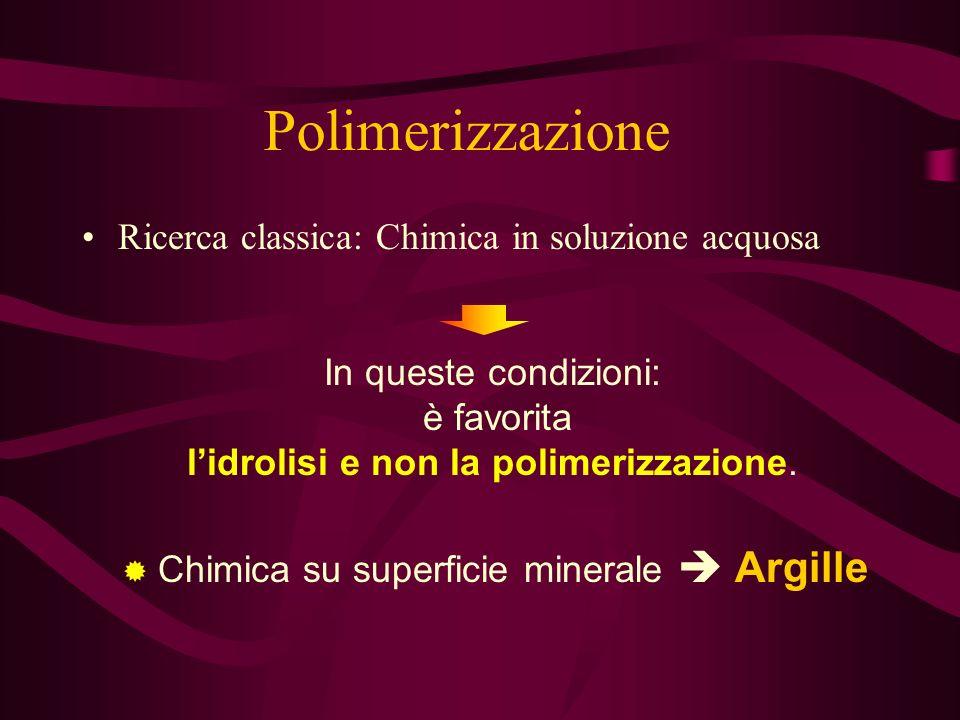Ricerca classica: Chimica in soluzione acquosa Polimerizzazione In queste condizioni: è favorita lidrolisi e non la polimerizzazione.
