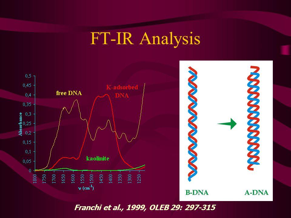 FT-IR Analysis Franchi et al., 1999, OLEB 29: 297-315