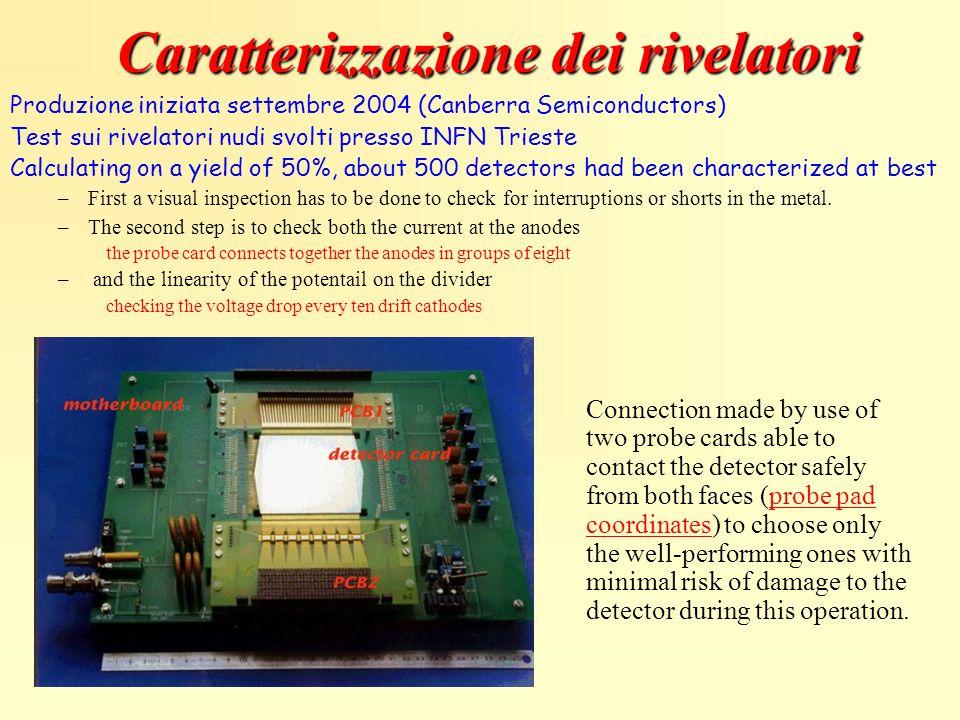 Caratterizzazione dei rivelatori Produzione iniziata settembre 2004 (Canberra Semiconductors) Test sui rivelatori nudi svolti presso INFN Trieste Calc