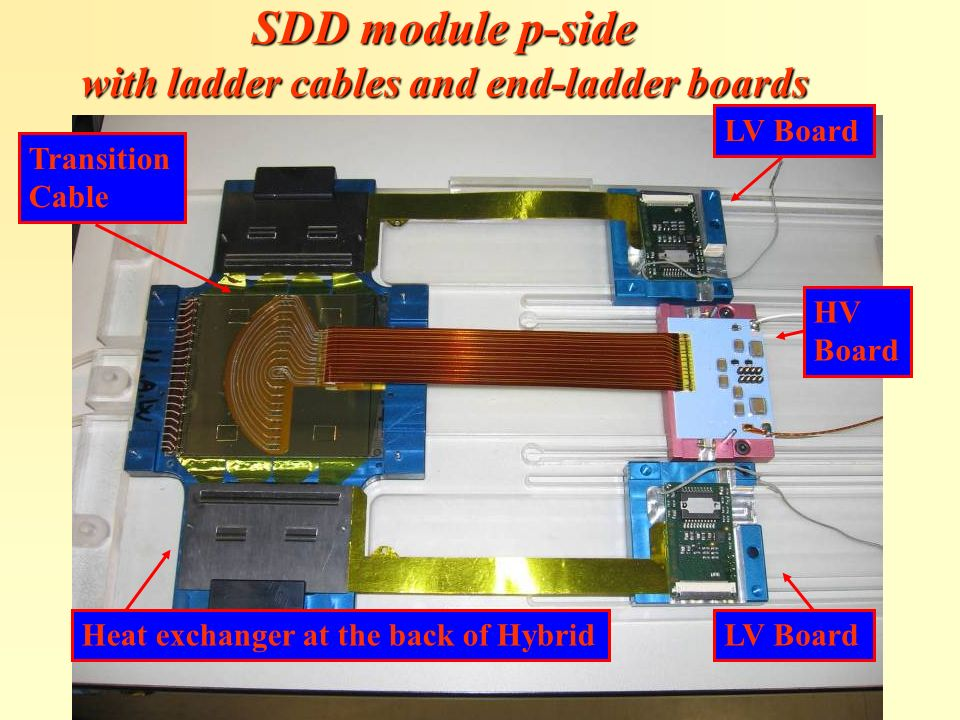 LV Board HV Board LV BoardHeat exchanger at the back of Hybrid Transition Cable SDD module p-side with ladder cables and end-ladder boards