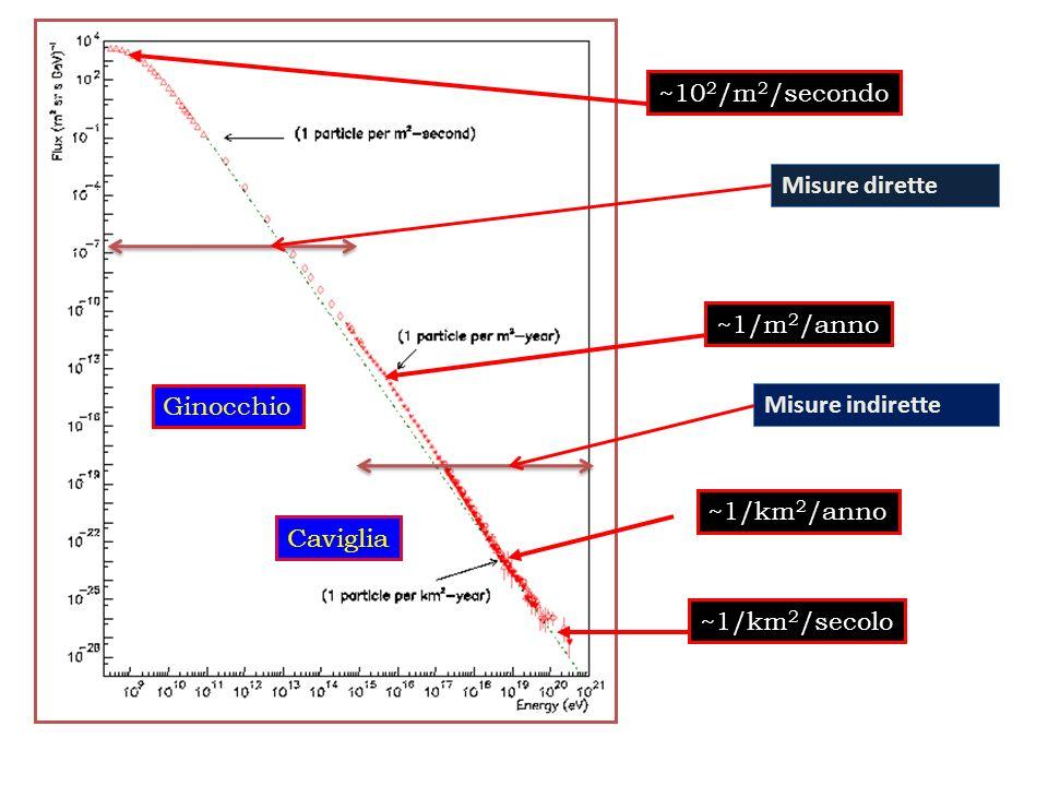 ~10 2 /m 2 /secondo ~1/m 2 /anno~1/km 2 /anno~1/km 2 /secoloGinocchio Caviglia Misure diretteMisure indirette