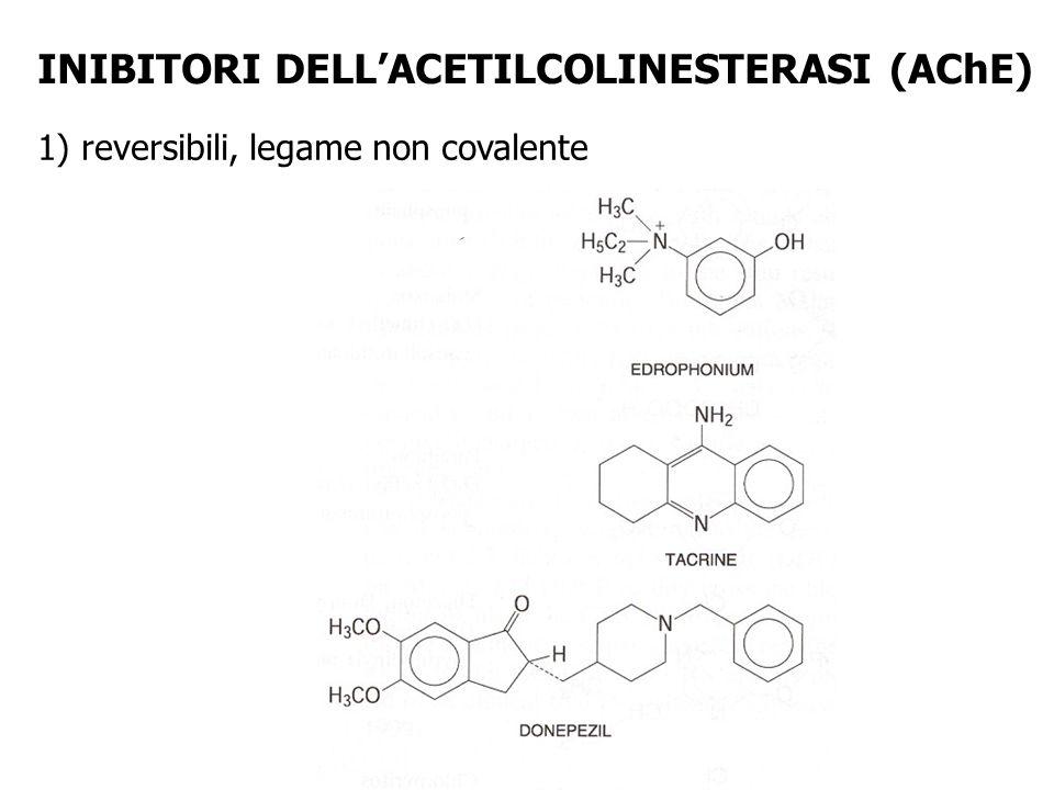 INIBITORI DELLACETILCOLINESTERASI (AChE) 1) reversibili, legame non covalente