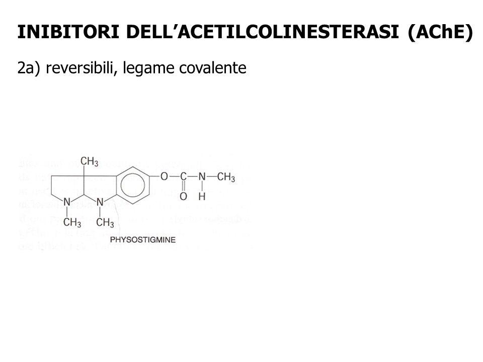 INIBITORI DELLACETILCOLINESTERASI (AChE) 2a) reversibili, legame covalente