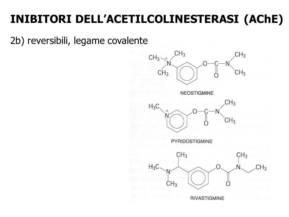INIBITORI DELLACETILCOLINESTERASI (AChE) 2b) reversibili, legame covalente