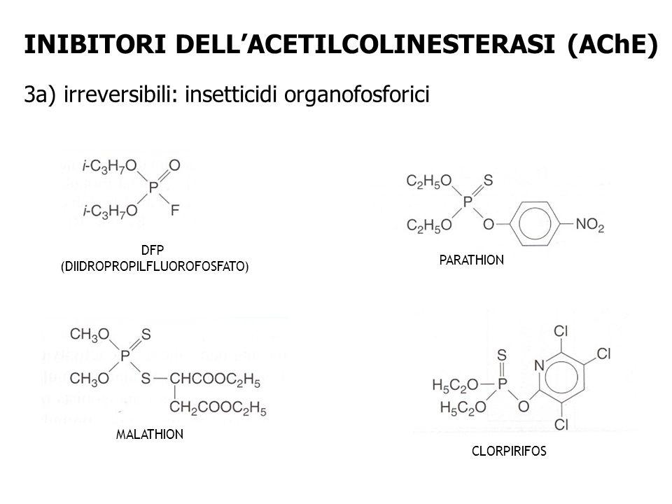 DFP (DIIDROPROPILFLUOROFOSFATO) PARATHION MALATHION CLORPIRIFOS INIBITORI DELLACETILCOLINESTERASI (AChE) 3a) irreversibili: insetticidi organofosforic