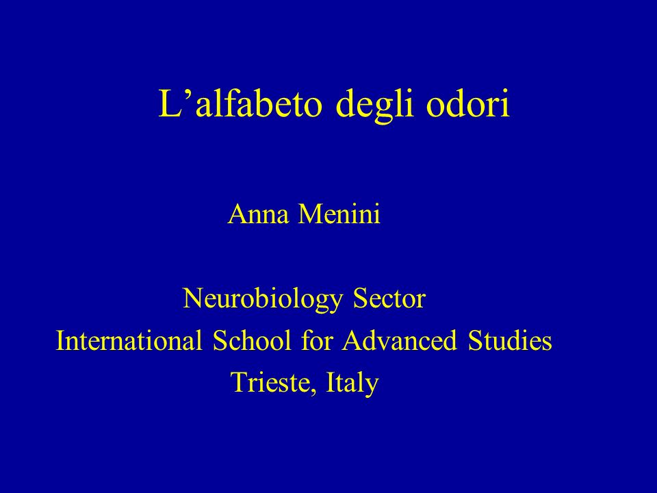 Lalfabeto degli odori Anna Menini Neurobiology Sector International School for Advanced Studies Trieste, Italy