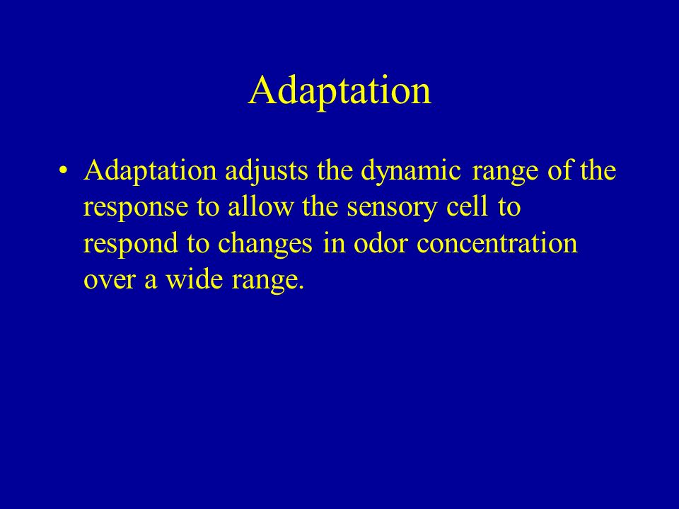 Adaptation adjusts the dynamic range of the response to allow the sensory cell to respond to changes in odor concentration over a wide range.