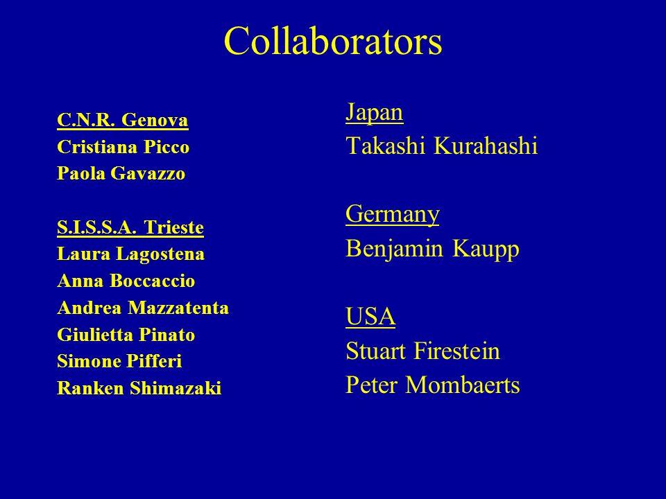 Collaborators C.N.R. Genova Cristiana Picco Paola Gavazzo S.I.S.S.A. Trieste Laura Lagostena Anna Boccaccio Andrea Mazzatenta Giulietta Pinato Simone