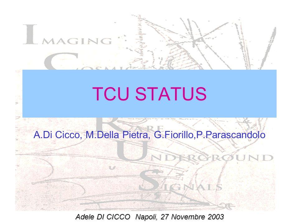 TCU STATUS A.Di Cicco, M.Della Pietra, G.Fiorillo,P.Parascandolo Adele DI CICCONapoli, 27 Novembre 2003