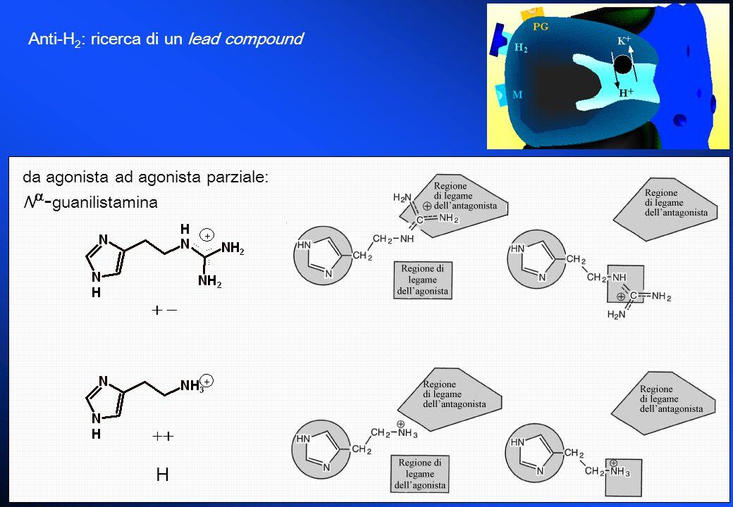Anti-H 2 : ricerca di un lead compound da agonista ad agonista parziale: N - guanilistamina H