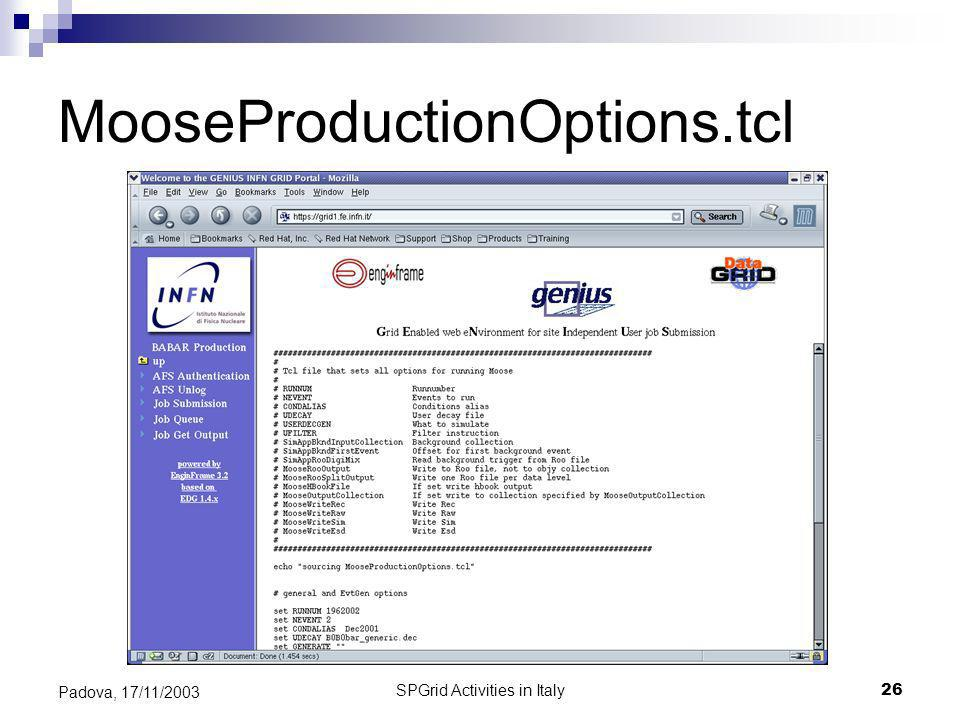 SPGrid Activities in Italy26 Padova, 17/11/2003 MooseProductionOptions.tcl