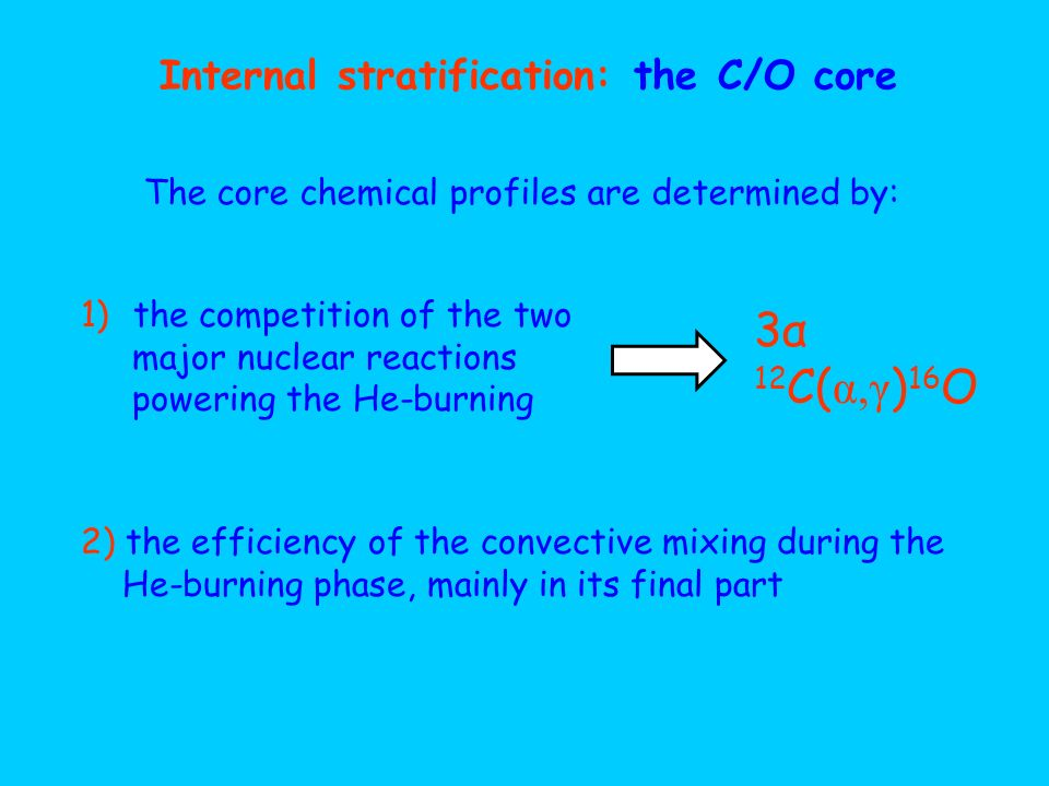 Internal stratification: the C/O core The core chemical profiles are determined by: 1)the competition of the two major nuclear reactions powering the
