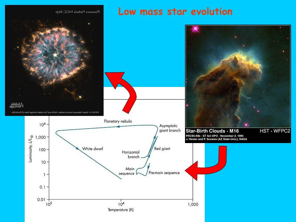 Low mass star evolution