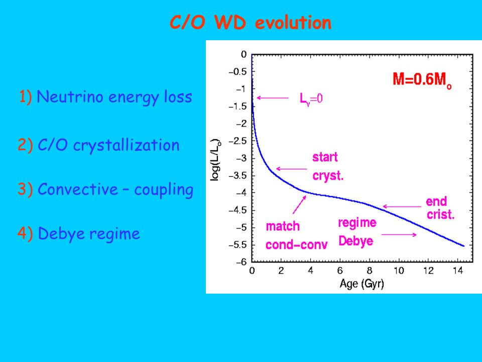 C/O WD evolution 1) Neutrino energy loss 2) C/O crystallization 3) Convective – coupling 4) Debye regime