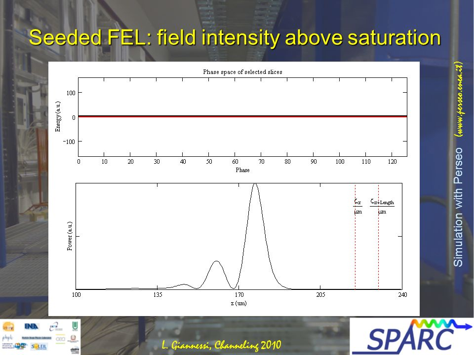Seeded FEL: field intensity above saturation Simulation with Perseo (www.perseo.enea.it) L.