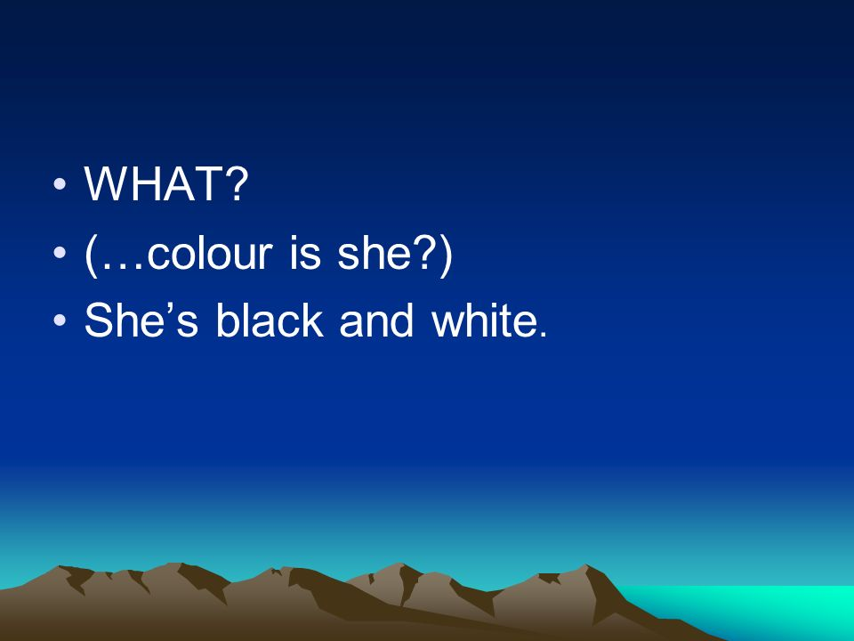WHAT? (…colour is she?) Shes black and white.