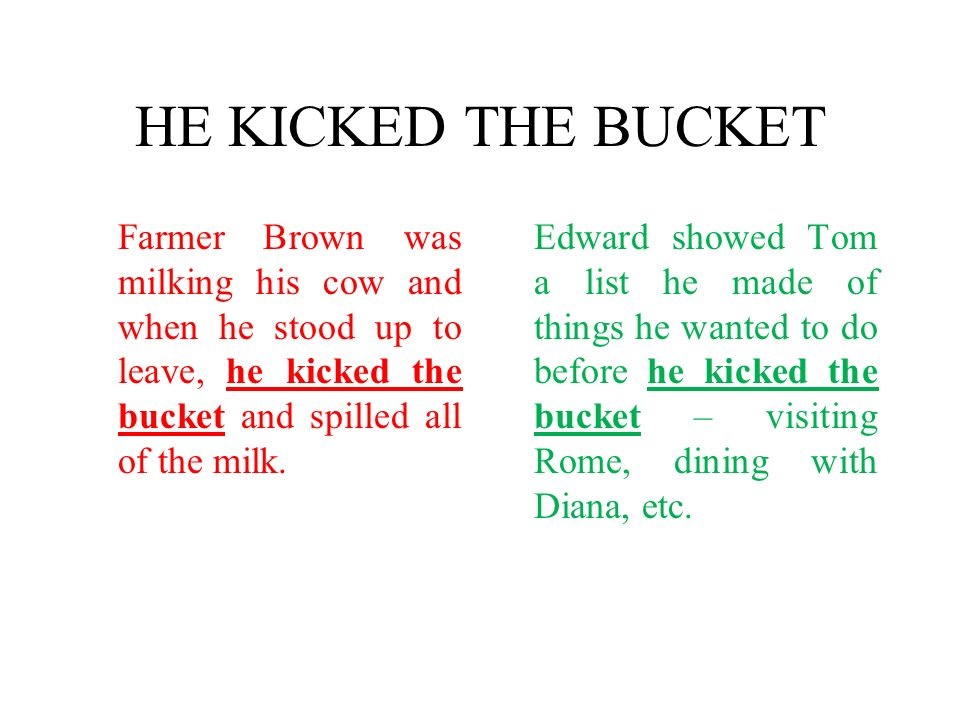 HE KICKED THE BUCKET Farmer Brown was milking his cow and when he stood up to leave, he kicked the bucket and spilled all of the milk.