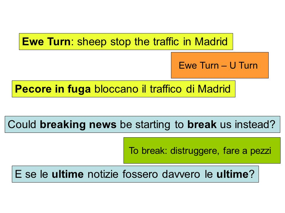 Ewe Turn: sheep stop the traffic in Madrid Pecore in fuga bloccano il traffico di Madrid Could breaking news be starting to break us instead? E se le