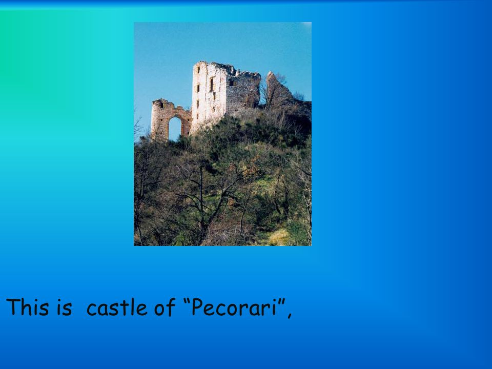 This is castle of Pecorari,