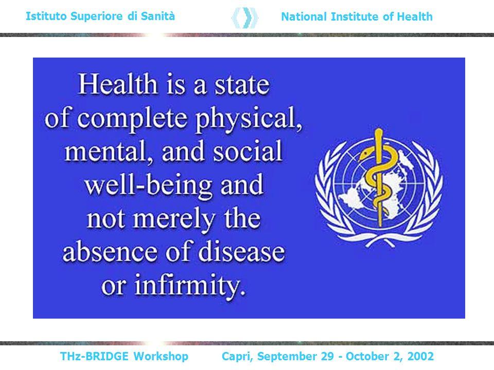THz-BRIDGE Workshop Capri, September 29 - October 2, 2002 Istituto Superiore di Sanità National Institute of Health