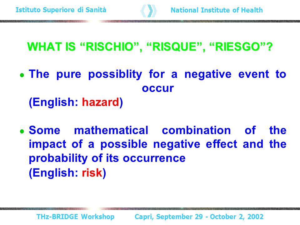 THz-BRIDGE Workshop Capri, September 29 - October 2, 2002 Istituto Superiore di Sanità National Institute of Health WHAT IS RISCHIO, RISQUE, RIESGO.