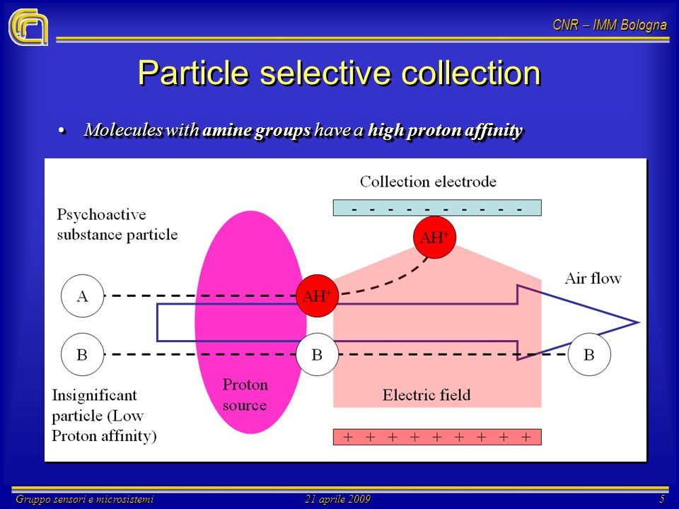 CNR – IMM Bologna Gruppo sensori e microsistemi21 aprile 20095 Particle selective collection Molecules with amine groups have a high proton affinityMolecules with amine groups have a high proton affinity