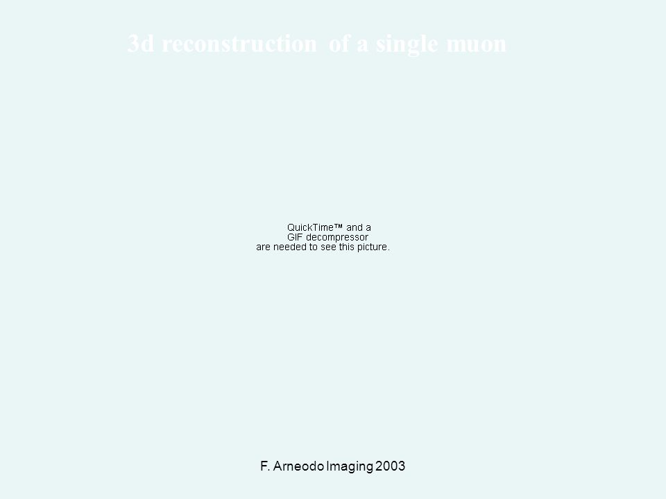 F. Arneodo Imaging 2003 3d reconstruction of a single muon