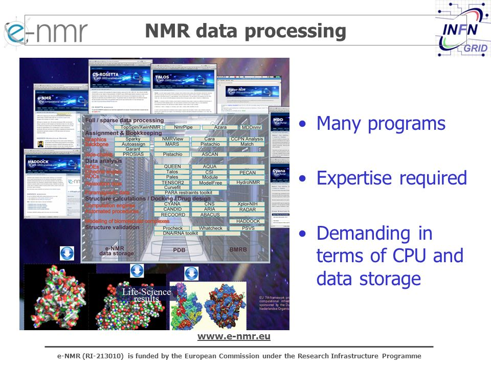 e-NMR (RI-213010) is funded by the European Commission under the Research Infrastructure Programme www.e-nmr.eu NMR data processing Many programs Expertise required Demanding in terms of CPU and data storage