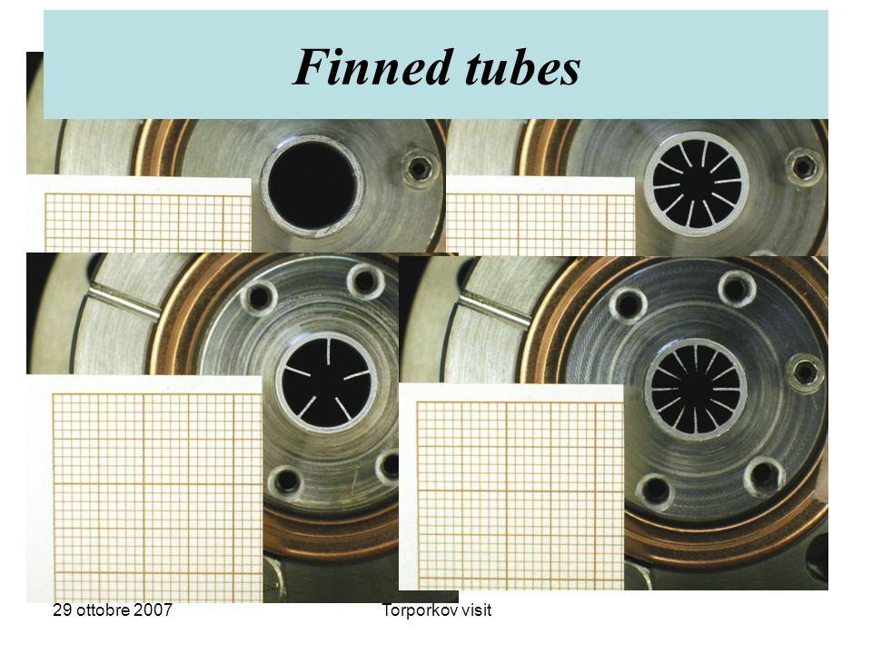 29 ottobre 2007Torporkov visit Finned tubes
