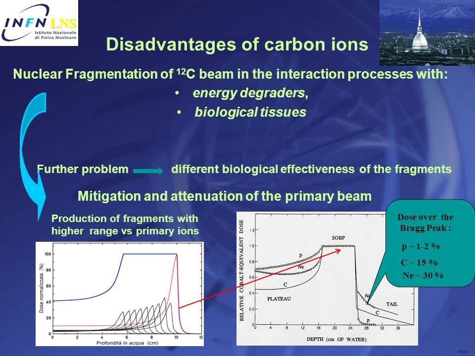 Disadvantages of carbon ions Nuclear Fragmentation of 12 C beam in the interaction processes with: energy degraders, biological tissues Further proble
