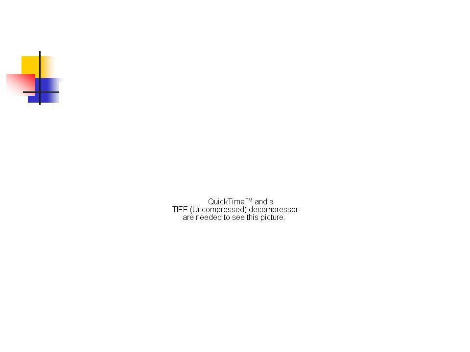 The retina… Horizontal cell Bipolar cell Amacrine cell Ganglion cell Optical Nerve Light http://webvision.med.utah.edu/