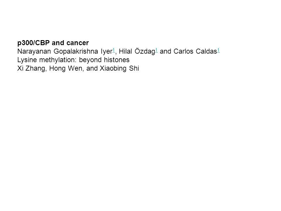 p300/CBP and cancer Narayanan Gopalakrishna Iyer 1, Hilal Özdag 1 and Carlos Caldas 1 1 Lysine methylation: beyond histones Xi Zhang, Hong Wen, and Xi
