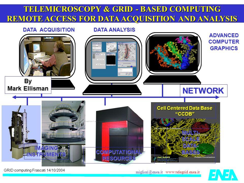 GRID computing Frascati 14/10/2004 migliori@enea.it www.telegrid.enea.it ENEA GRID: FTU video acquisition data