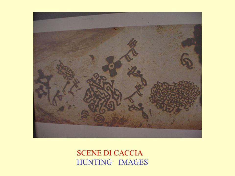 SCENE DI CACCIA HUNTING IMAGES