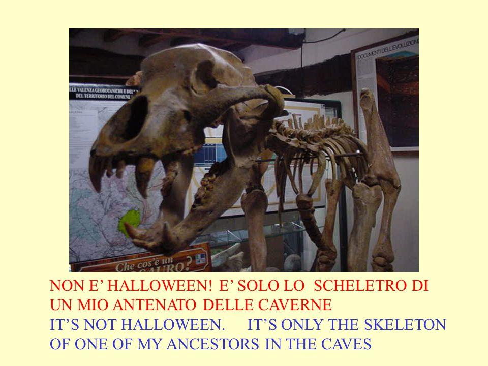 NON E HALLOWEEN! E SOLO LO SCHELETRO DI UN MIO ANTENATO DELLE CAVERNE ITS NOT HALLOWEEN. ITS ONLY THE SKELETON OF ONE OF MY ANCESTORS IN THE CAVES