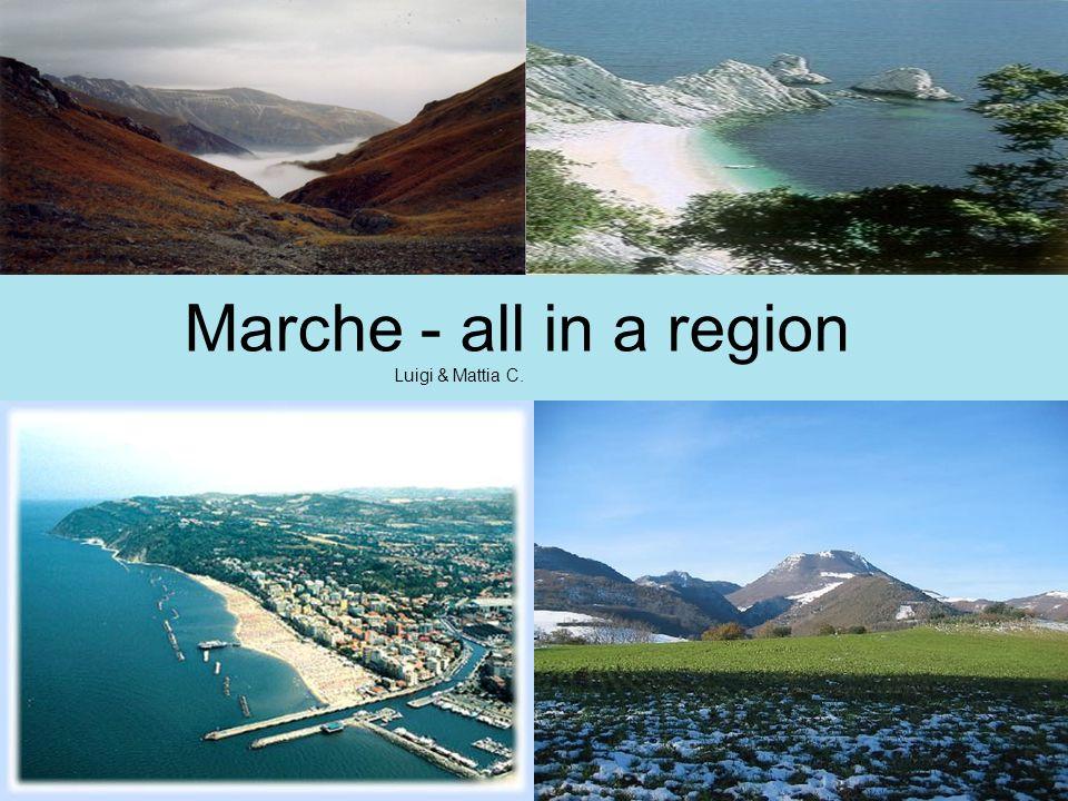 Pesaro – Urbino 91.086 people Macerata 40.875 people Fermo 35.781 people Ascoli Piceno 51.375 people Ancona 100.507 people
