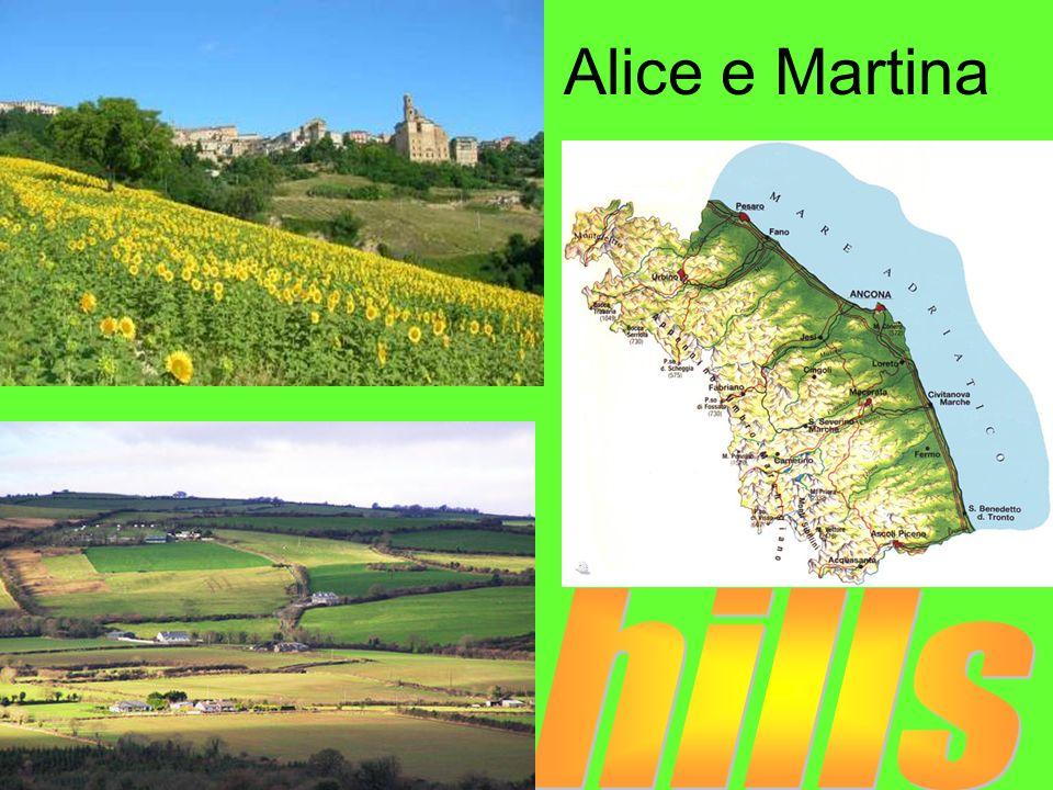Alice e Martina