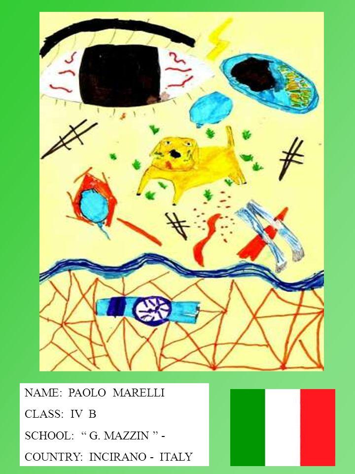 NAME: PAOLO MARELLI CLASS: IV B SCHOOL: G. MAZZIN - COUNTRY: INCIRANO - ITALY