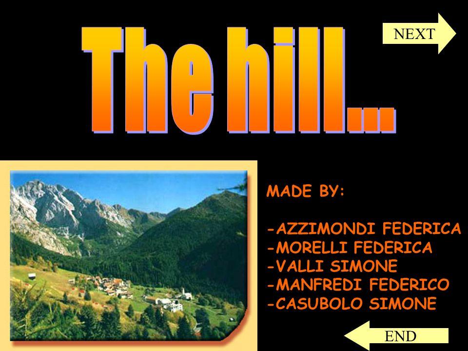 MADE BY: -AZZIMONDI FEDERICA -MORELLI FEDERICA -VALLI SIMONE -MANFREDI FEDERICO -CASUBOLO SIMONE NEXT END