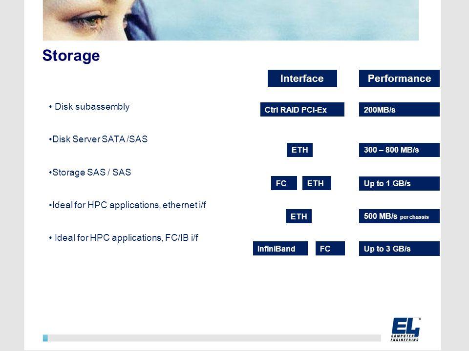 Storage Disk subassembly Disk Server SATA /SAS Storage SAS / SAS Ideal for HPC applications, ethernet i/f Ideal for HPC applications, FC/IB i/f Interf