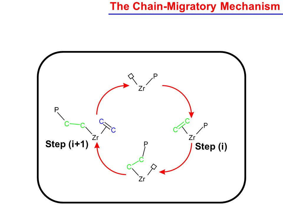 The Chain-Migratory Mechanism Step (i+1) Step (i)
