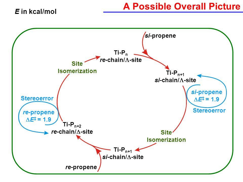 A Possible Overall Picture E in kcal/mol Ti-P n re-chain/ -site Ti-P n+1 si-chain/ -site Ti-P n+1 si-chain/ -site Ti-P n+2 re-chain/ -site Site Isomer