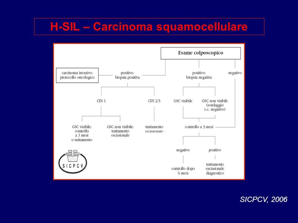 H-SIL – Carcinoma squamocellulare SICPCV, 2006