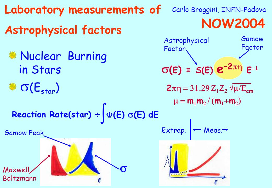 Carlo Broggini, INFN-Padova Nuclear Burning in Stars (E star ) ( E ) = S(E) e –2 E -1 2 cm m m m m Astrophysical Factor Gamow Factor Reaction Rate(star) (E) (E) dE Gamow Peak Maxwell Boltzmann Extrap.Meas.