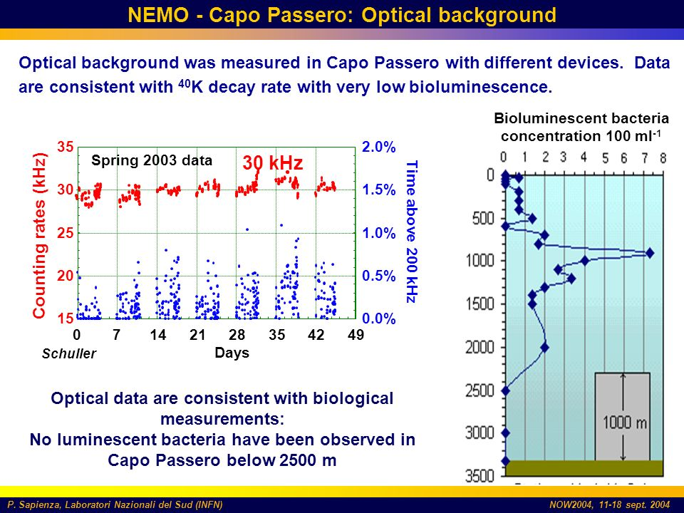 P. Sapienza, Laboratori Nazionali del Sud (INFN)NOW2004, 11-18 sept. 2004 NEMO - Capo Passero: Optical background Optical background was measured in C