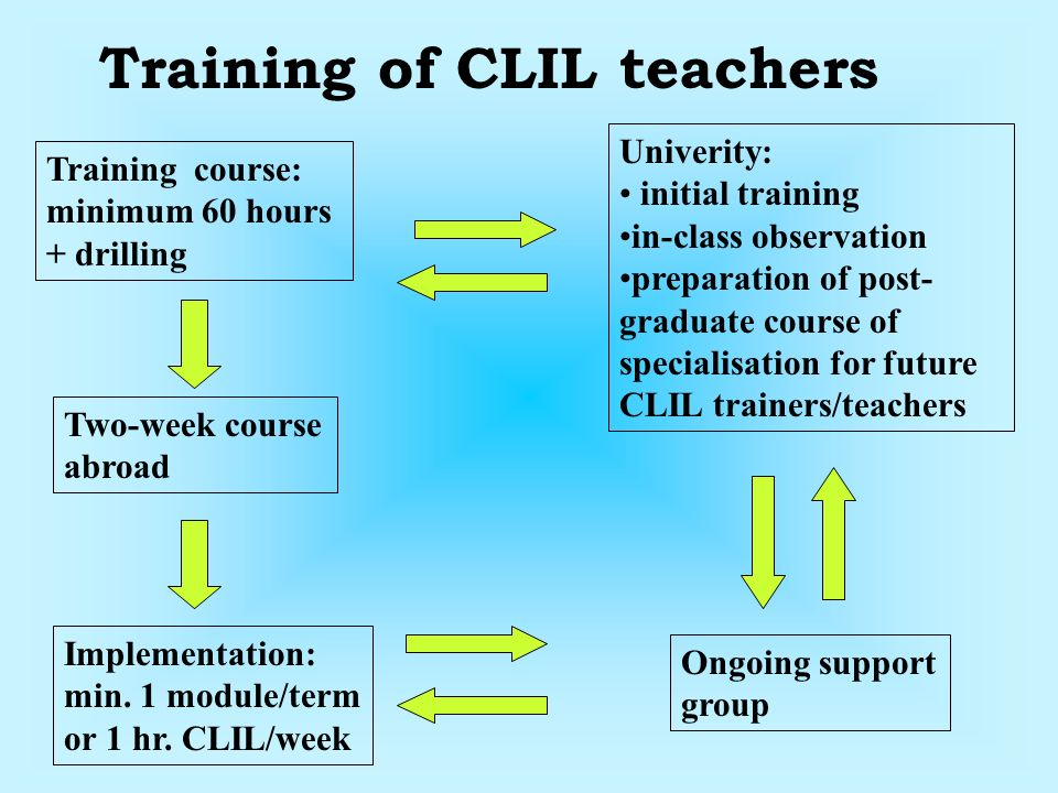 Ongoing support group Univerity: initial training in-class observation preparation of post- graduate course of specialisation for future CLIL trainers