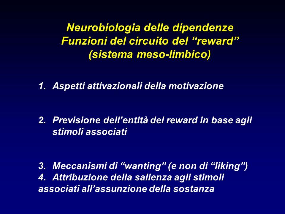 Neurobiologia delle dipendenze Funzioni del circuito del reward (sistema meso-limbico) 1.Aspetti attivazionali della motivazione 2.Previsione dellenti