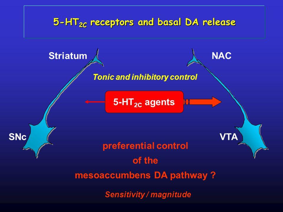 SNc Striatum VTA NAC 5-HT 2C agents 5-HT 2C receptors and basal DA release Tonic and inhibitory control preferential control of the mesoaccumbens DA p