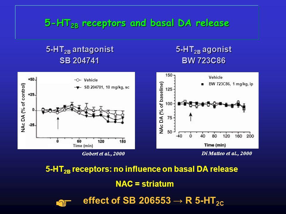5-HT 2B receptors and basal DA release 5-HT 2B antagonist SB 204741 NAc DA (% of baseline) Vehicle BW 723C86, 1 mg/kg, ip Di Matteo et al., 2000 Vehic